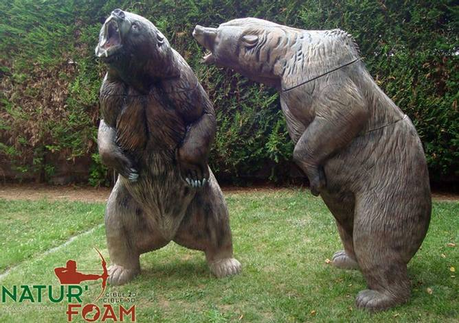 Bilde av NF Brown Bear